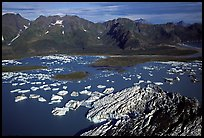 Aerial view of Bear Glacier and lagoon. Kenai Fjords National Park, Alaska, USA.
