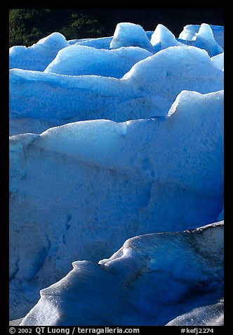 Ridges of blue ice at the terminus of Exit Glacier. Kenai Fjords National Park (color)