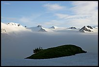 Patch of grass emerging from snow cover and mountains. Kenai Fjords National Park ( color)