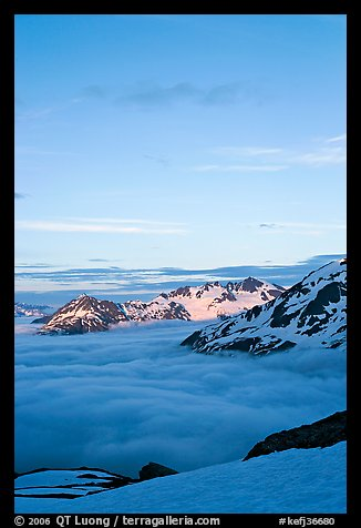 Snowy mountains and see of clouds at sunset. Kenai Fjords National Park (color)