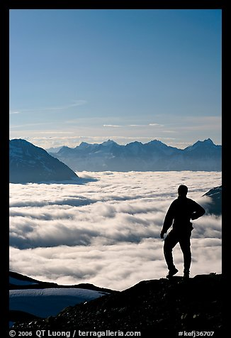 Man above a sea of clouds. Kenai Fjords National Park (color)
