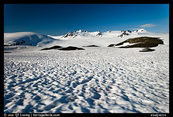 Snow cups and Harding icefield. Kenai Fjords National Park (color)