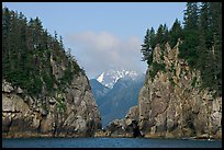 Steep rocky islands, Aialik Bay. Kenai Fjords National Park, Alaska, USA.