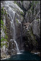 Waterfall streaming into Cataract Cove, Northwestern Fjord. Kenai Fjords National Park, Alaska, USA. (color)