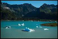 Aerial View of icebergs in Bear Glacier Lagoon. Kenai Fjords National Park ( color)