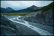 Gorge recently uncovered by Exit Glacier. Kenai Fjords National Park ( color)
