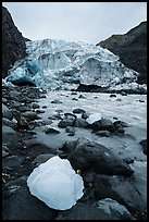 Iceberg, stream, Exit Glacier front, 2016. Kenai Fjords National Park ( color)