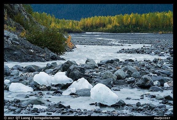 Icebergs and outwash plain in autumn. Kenai Fjords National Park (color)