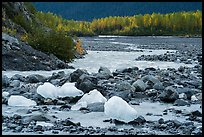 Icebergs and outwash plain in autumn. Kenai Fjords National Park ( color)