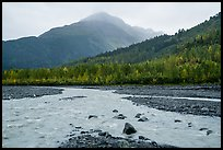 Streams on Exit Glacier outwash plain in the rain. Kenai Fjords National Park ( color)