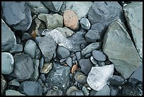Close-up of rocks and icebergs, Exit Glacier outwash plain. Kenai Fjords National Park ( color)