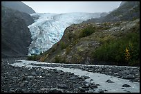 Exit Glacier viewed from glacial outwash plain. Kenai Fjords National Park ( color)
