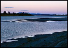 Sand bar shore, river, row of spruce trees,  and Baird mountains, evening. Kobuk Valley National Park ( color)