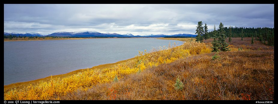 Tundra and river. Kobuk Valley National Park (color)