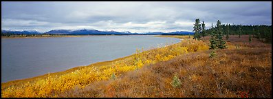 Tundra and river. Kobuk Valley National Park (Panoramic color)