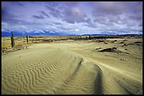 Ripples in the Great Sand Dunes. Kobuk Valley National Park ( color)