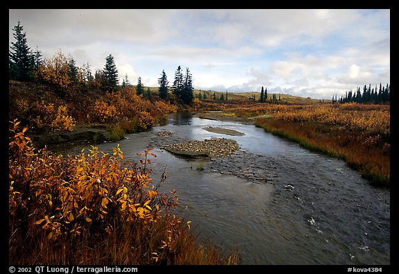 Kavet Creek, with the Great Sand Dunes in the background. Kobuk Valley National Park, Alaska, USA.