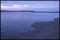 Sand bar shore with caribou tracks, evening. Kobuk Valley National Park ( color)
