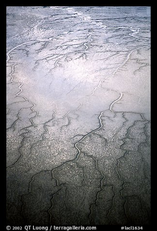 Aerial view of mud flat dendritic pattern on Cook inlet. Lake Clark National Park (color)