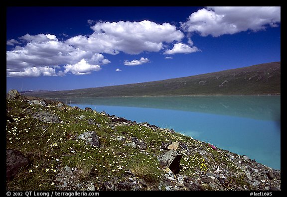 Turquoise Lake. Lake Clark National Park (color)