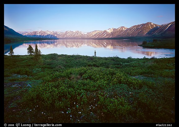 Tundra in summer with wildflowers and Twin Lake shore. Lake Clark National Park (color)