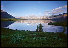 Twin Lakes with mountain reflections and green tundra, evening. Lake Clark National Park, Alaska, USA.
