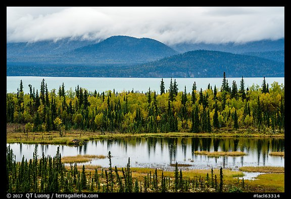 Beaver Pond and Lake Clark. Lake Clark National Park (color)