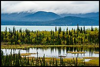 pictures of Lake Clark Fall Colors