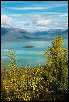 Lake Clark and islet framed by trees in autumn foliage. Lake Clark National Park ( color)