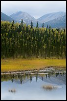 Beaver Pond in autumn. Lake Clark National Park ( color)