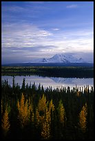 Mt Wrangell reflected in Willow lake, early morning. Wrangell-St Elias National Park, Alaska, USA.
