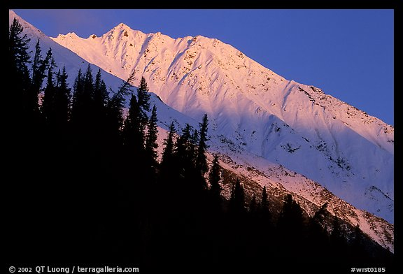 Bonanza ridge near Kennicott, sunset. Wrangell-St Elias National Park (color)