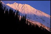 Bonanza ridge near Kennicott, sunset. Wrangell-St Elias National Park ( color)
