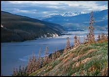 Wide Chitina river. Wrangell-St Elias National Park ( color)