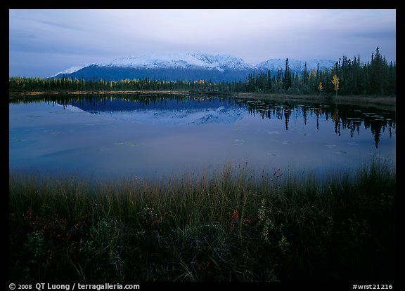 Pond with mountain reflections at dusk, near Chokosna. Wrangell-St Elias National Park (color)