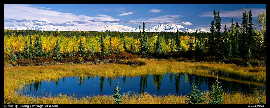 Autumn landscape with pond, forest, and distant mountains. Wrangell-St Elias National Park (color)
