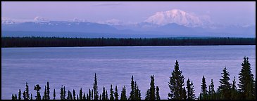 Snowy mountain rising mysteriously above lake. Wrangell-St Elias National Park (Panoramic color)