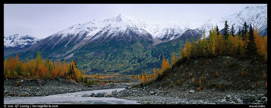 Autumn mountain landscape with snowy peaks above river and trees. Wrangell-St Elias National Park (color)