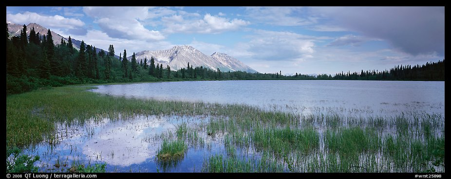 Reeds, pond, and mountains with open horizon. Wrangell-St Elias National Park (color)