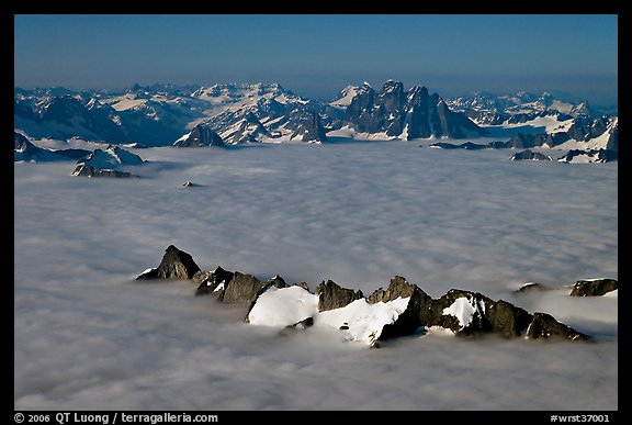 Aerial view of peaks emerging from sea of clouds, St Elias range. Wrangell-St Elias National Park (color)
