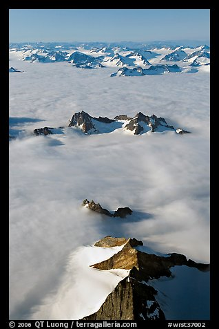 Aerial view of ridges and summits emerging from sea of clouds, St Elias range. Wrangell-St Elias National Park (color)