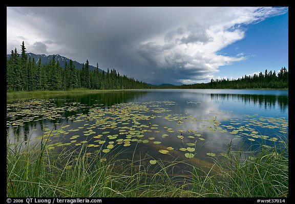 Crystal Lake with starting afternoon shower. Wrangell-St Elias National Park, Alaska, USA.