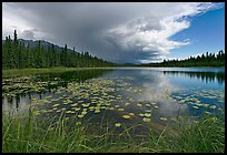 Crystal Lake with starting afternoon shower. Wrangell-St Elias National Park, Alaska, USA. (color)