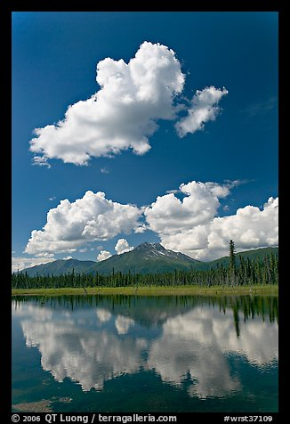 Puffy clouds reflected in lake. Wrangell-St Elias National Park (color)