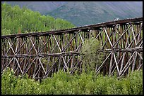 Section of Gilahina trestle constructed in 1911. Wrangell-St Elias National Park, Alaska, USA. (color)