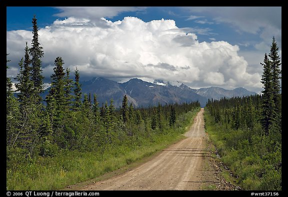 Nabesna Road, mid-afternoon. Wrangell-St Elias National Park, Alaska, USA.