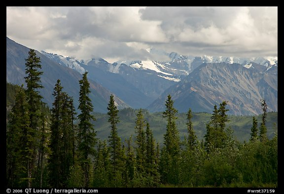 Spruce and Nutzotin Mountains. Wrangell-St Elias National Park (color)