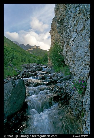 Stream and cliff, Skokum Volcano. Wrangell-St Elias National Park (color)