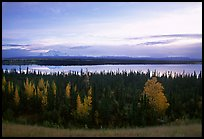 Mt Wrangell and Willow Lake, morning. Wrangell-St Elias National Park, Alaska, USA.