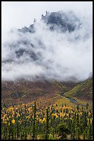 Spires of Skookum Volcano emerging from mist. Wrangell-St Elias National Park ( color)